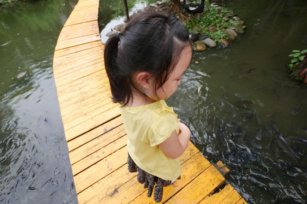 沙鹿人間食解:庭園水池生態景觀餐廳,復古味十足的自然環境 @飛天璇的口袋