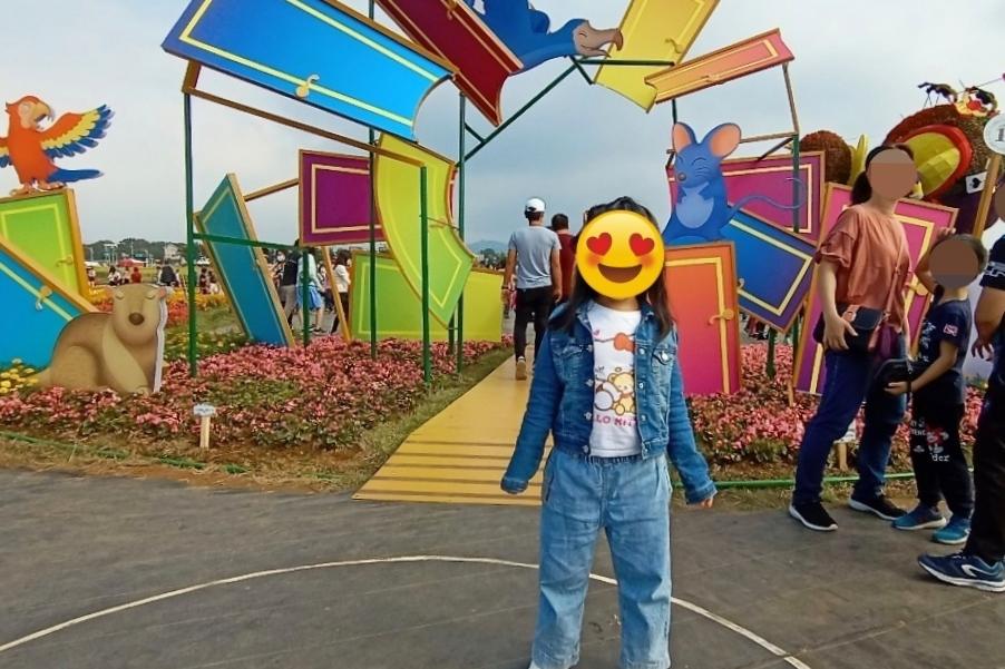 2020新社花海x台中國際花毯節:愛麗絲的花境冒險登場囉!交通方式、接駁車、停車場、美食推薦、旅遊景點 @飛天璇的口袋