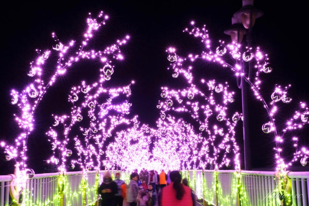 【台中石岡】2021石岡花漾藝術節:必拍7大主題燈展區,充滿愛心元素的石岡燈會 @飛天璇的口袋