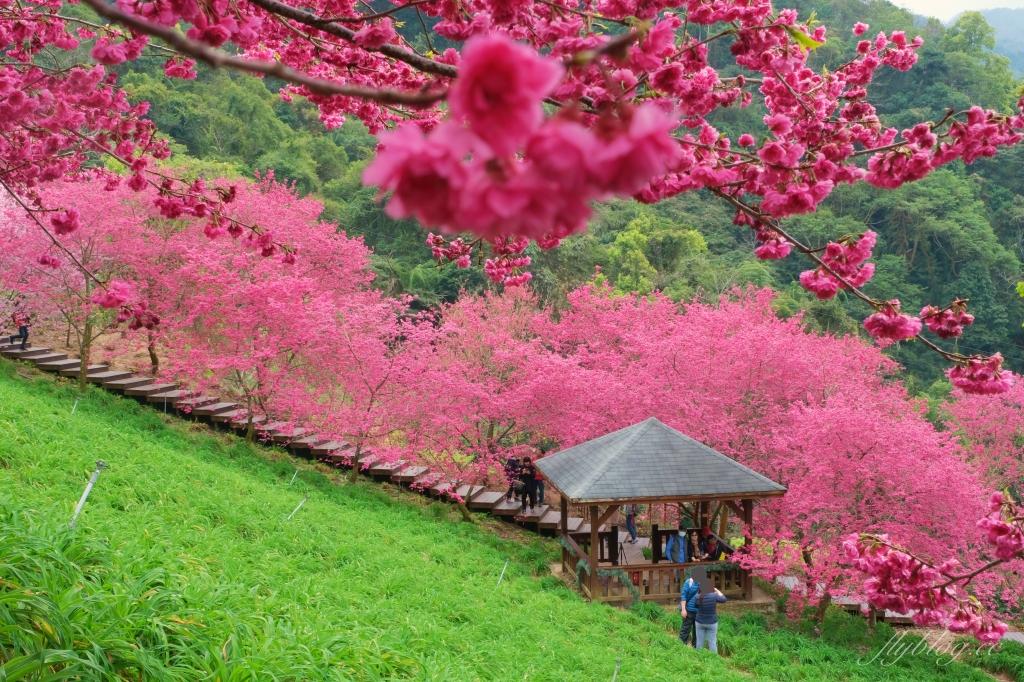 Quil Fait Bon水果派@銀座旗艦店:個人推薦東京必吃甜點!使用當季水果的超好吃水果派 @飛天璇的口袋
