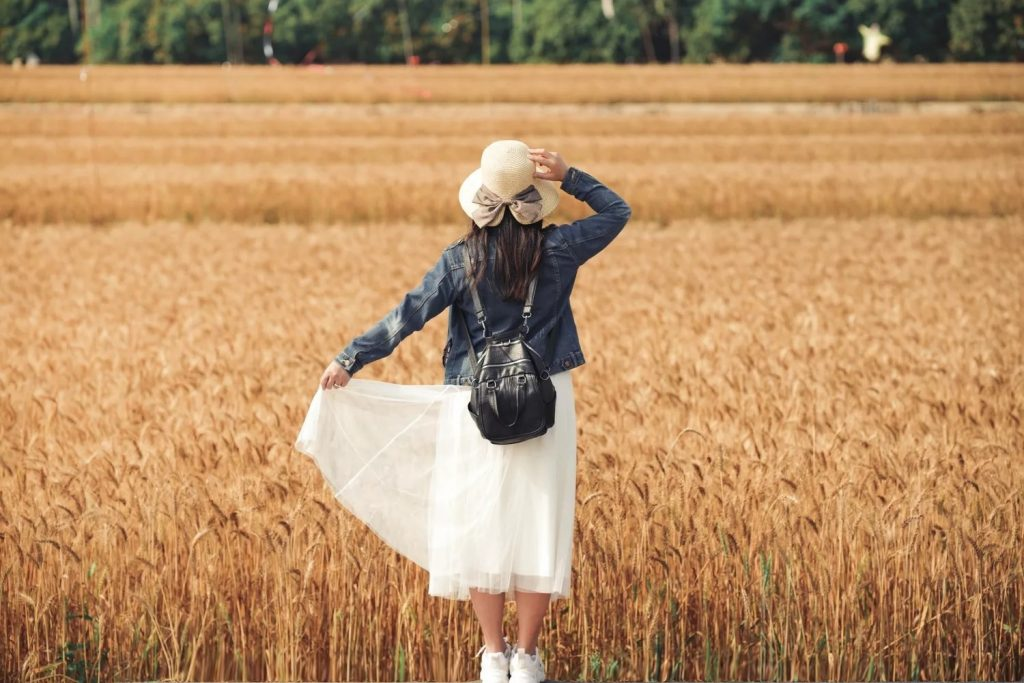 【台中大雅】 2021大雅小麥田:隨風搖曳金黃色麥浪,如詩如畫的悠逸景緻 @飛天璇的口袋