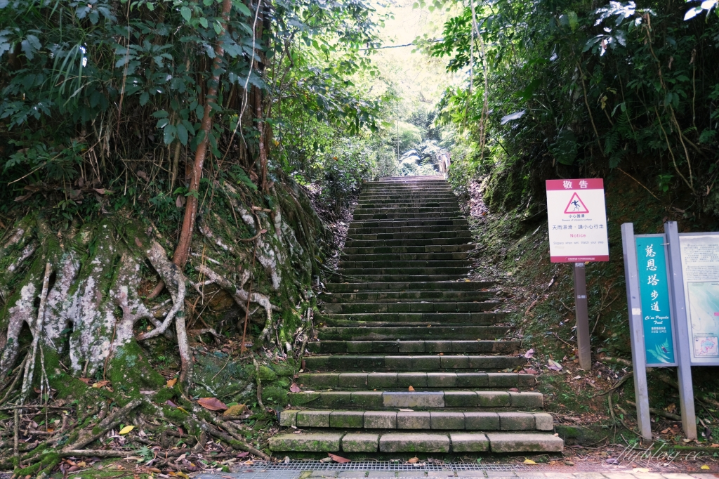 【南投魚池】 慈恩塔步道:570公尺步道綠意盎然,360度無死角眺望日月潭 @飛天璇的口袋