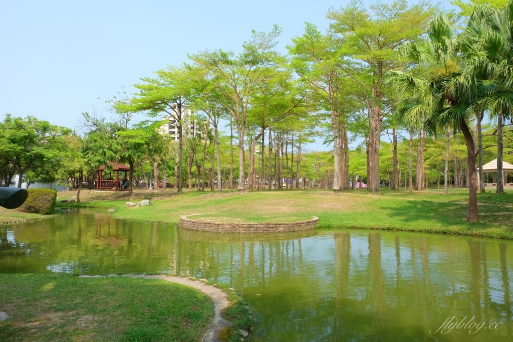 舊社公園:搭乘台中捷運松竹站下車即到,綠意盎然充滿綠意的生態公園 @飛天璇的口袋