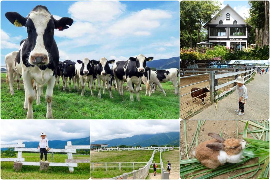 初鹿牧場:幅員遼闊的親子旅遊景點,滾草區、餵食區、動物區、森林浴區 @飛天璇的口袋