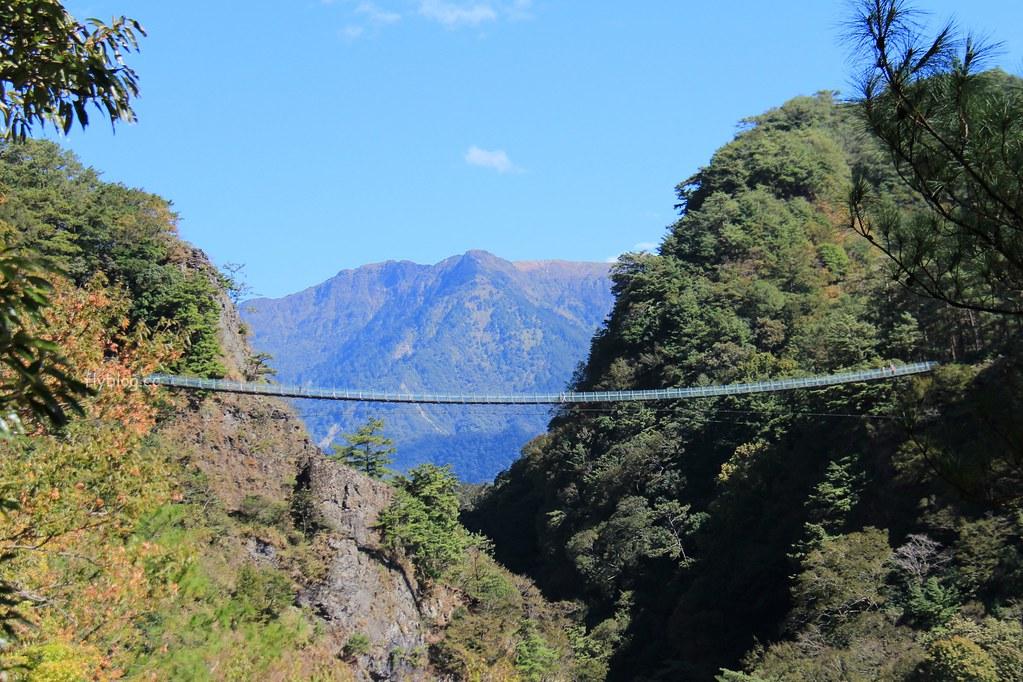 南投仁愛|奧萬大一日遊 台灣最美的賞楓盛地,體驗最豐富的生態資源 @飛天璇的口袋