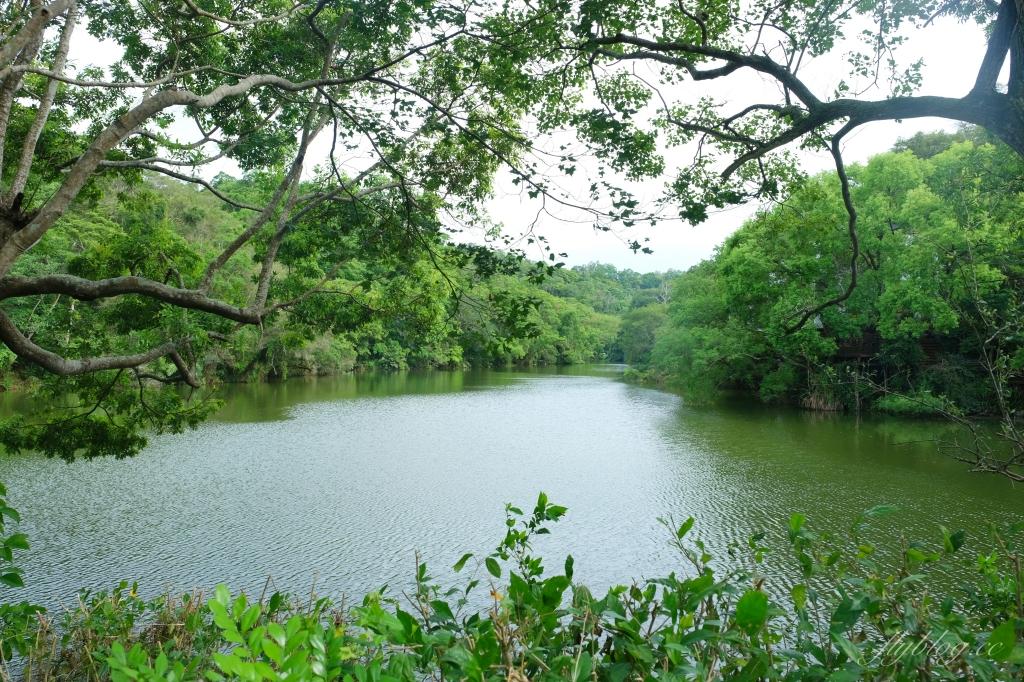 【苗栗大湖】湖畔花時間:依山傍水的景觀民宿,還有療癒的露天溫泉 @飛天璇的口袋