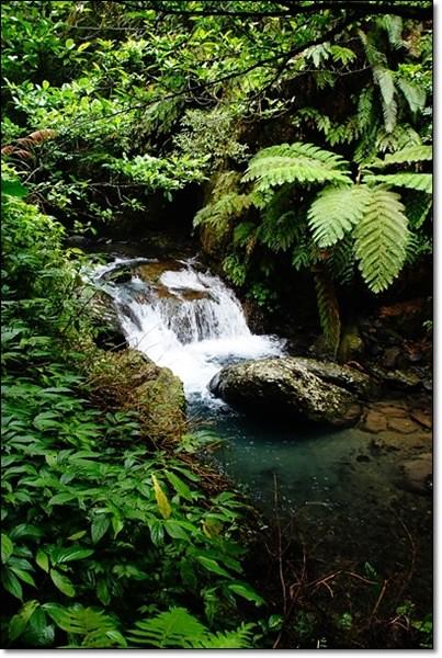 【宜蘭旅遊景點】礁溪林美石磐步道。宜蘭的小太魯閣,遠離塵囂享受芬多精 @飛天璇的口袋