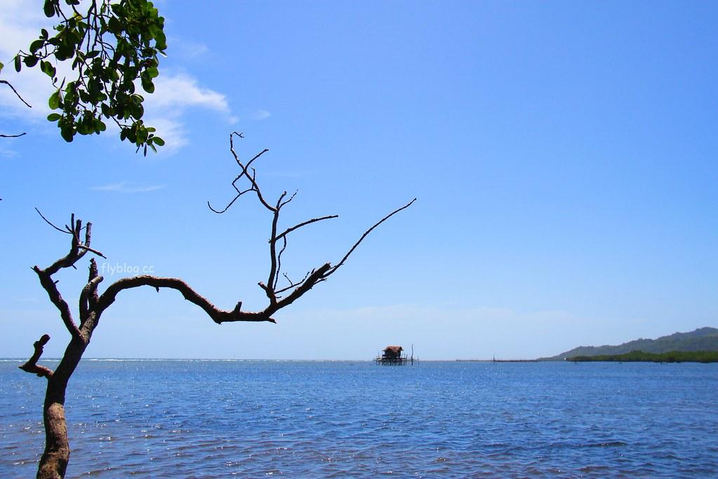 Lamanok Island┃薄荷島景點:薄荷島超隱密生態小島,享受不一樣的生態之旅 @飛天璇的口袋