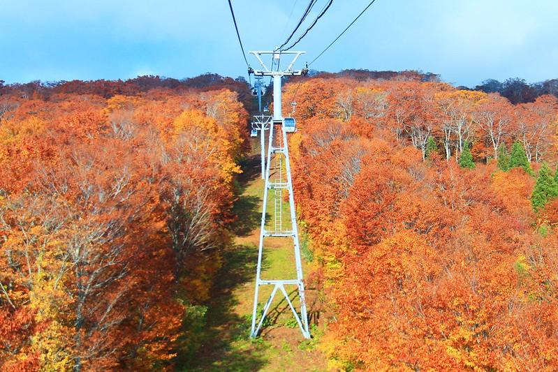 日本東北┃秋田旅遊景點:森吉山阿仁滑雪場,一年四季有不同的美景,分享2017年秋天美景和交通方式 @飛天璇的口袋