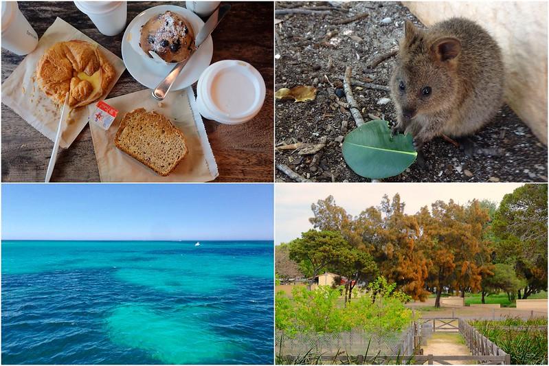 Rottnest Island 羅特尼斯島┃西澳伯斯:西澳最受觀迎的渡假天島嶼,與世界最快樂的動物Quokka近距離接觸 @飛天璇的口袋