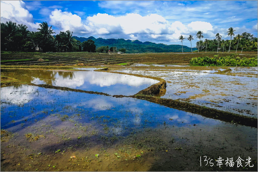 Eluterio's Farm Rice Terraces薄荷島梯田 + Can-Umantad Falls瀑布:深度旅遊薄荷島,體驗田園風光和密境瀑布 @飛天璇的口袋