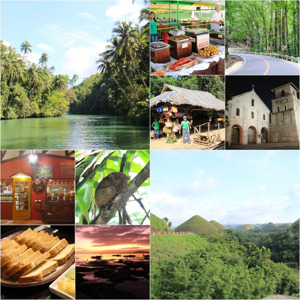 薄荷島一日遊┃菲律賓薄荷島:羅伯克河+人造森林+眼鏡猴保護區+巧克力山+巴卡容教堂+薄荷島蜜峰農場 @飛天璇的口袋