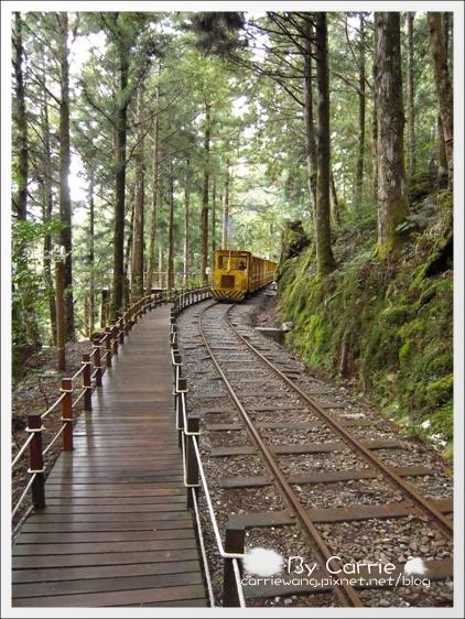 【宜蘭旅遊景點】太平山森林遊樂區+太平山蹦蹦車 @飛天璇的口袋