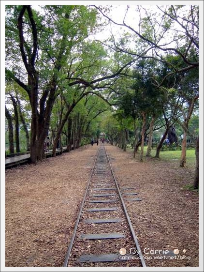 【宜蘭旅遊景點】羅東林業文化園區(羅東林場)。在市中心也可以做森林浴 @飛天璇的口袋