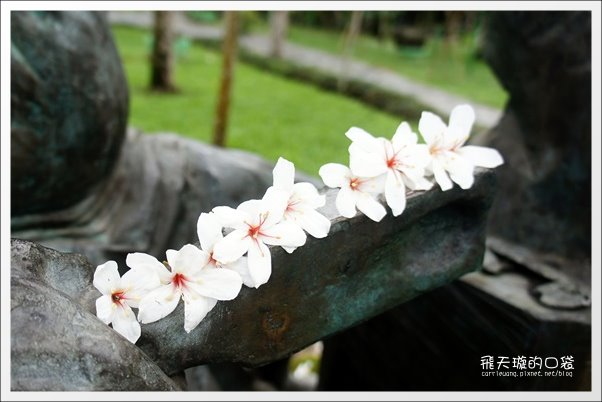 【南投旅遊景點】埔里牛耳藝術渡假村。2013桐花季最新花況 @飛天璇的口袋