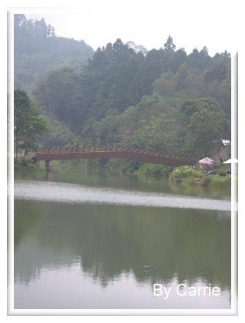 【苗栗旅遊】向天湖農場 @飛天璇的口袋